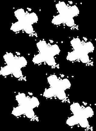 X Brancos.png