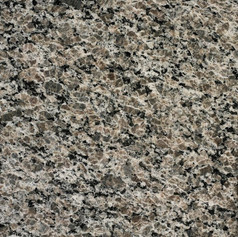 Caledonia Oyster Pearl Polished 3CM