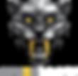 cybertooth logo.png