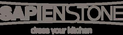 logo-sapienstone_edited.png