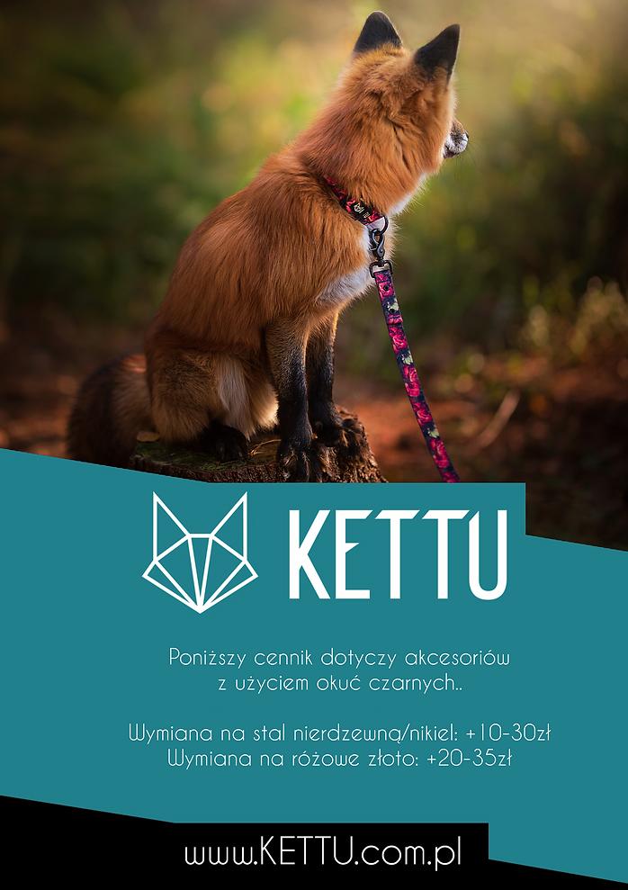 KETTU_cennik-1.png