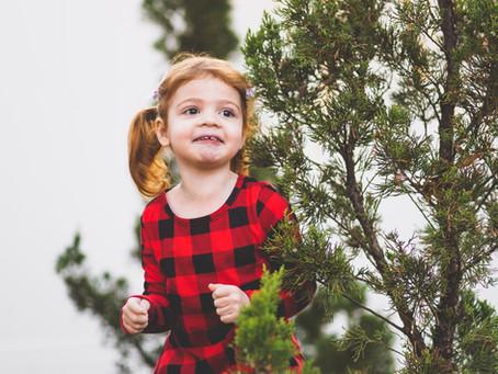 Session Blog - Christmas Family Photos