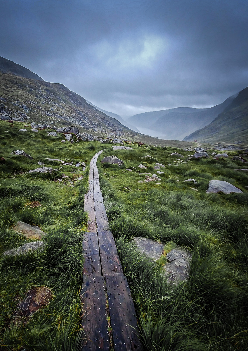 PDI - Walk The Plank by Steve Pratt (10 marks)