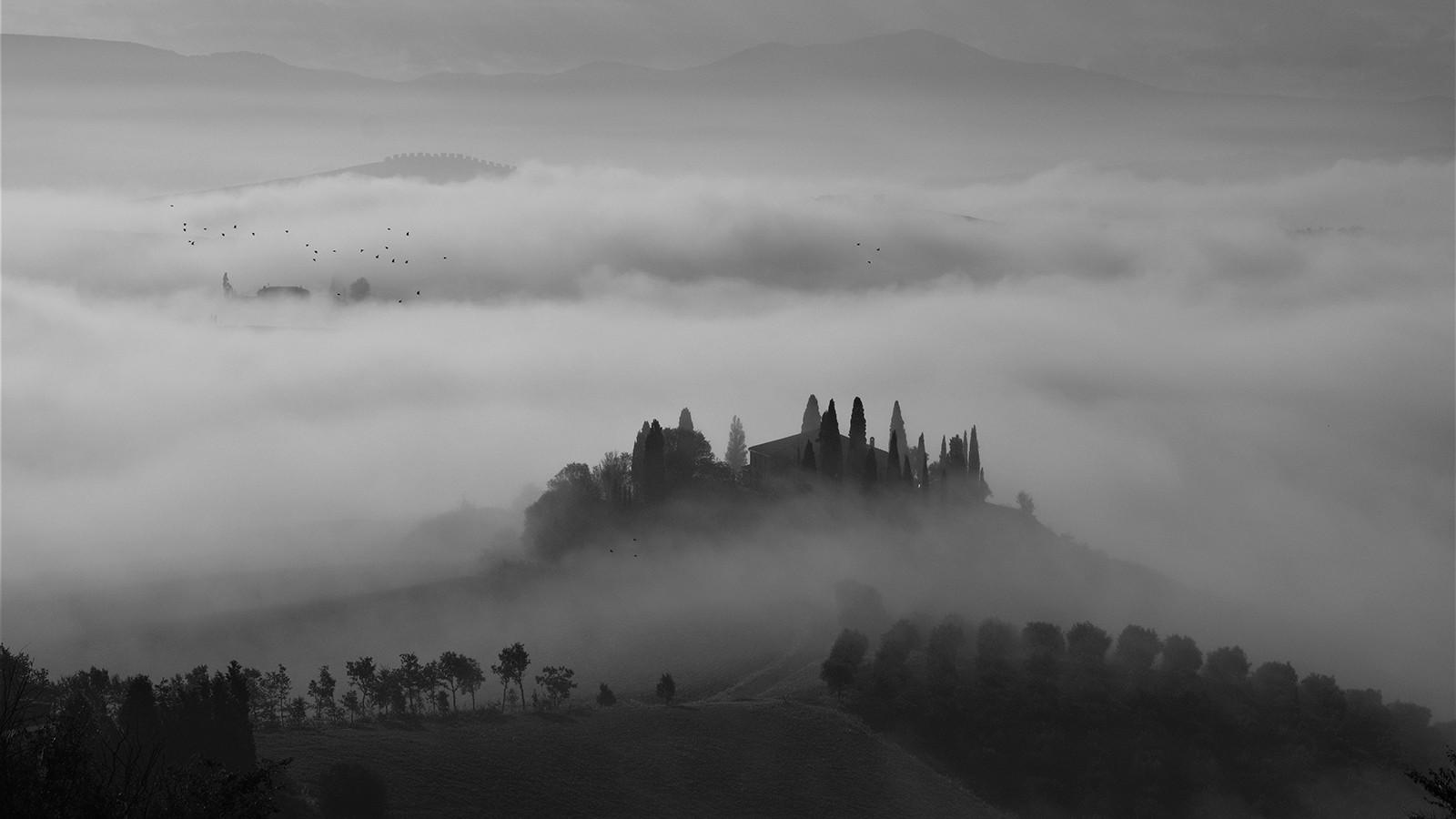 MONO - Misty Morning by Margaret Goodall (10 marks)