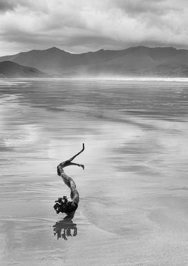MONO: 'Fermoyle' by Damian McConville - Belfast Photo Imaging Club