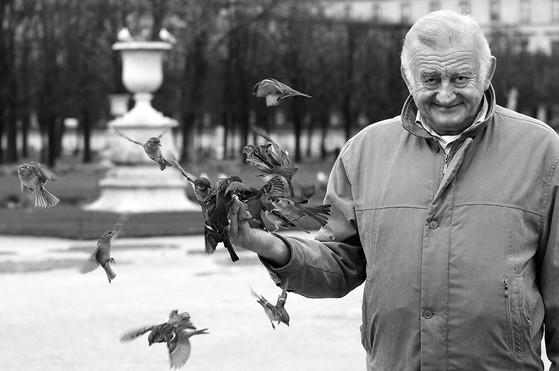 hombre pájaro, jardin des tuileries, paris