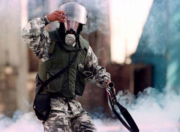 la ley, la paz. 1996