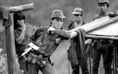 directivas, 1988