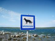 Hundestrand 2.jpg
