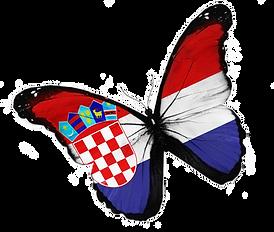 Schmetterling transparent.png