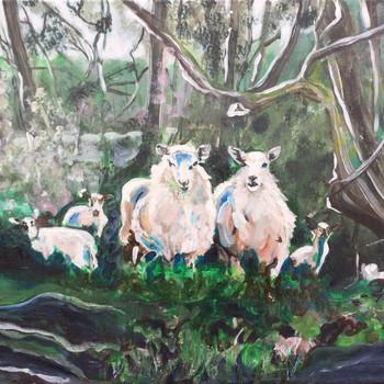 John's Sheep