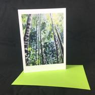 Card Coed Gwgan 2