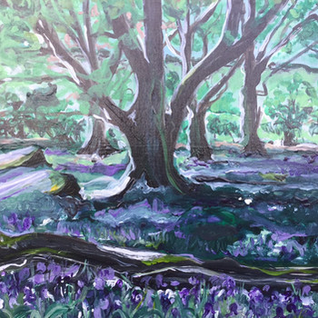 Bluebell Wood at Nannerth Fawr