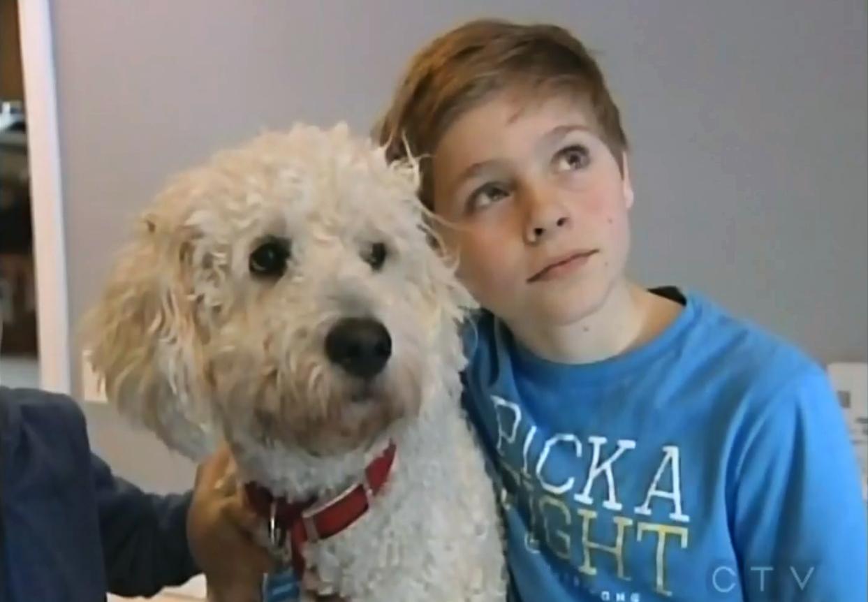 Family Pet Poisoned