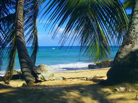 Beach paradise in the Dominican Republic