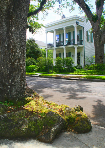 More than just manicured gardens and mansions, the Garden District in New Orleans is home to ghosts, legends and celebrity lore.