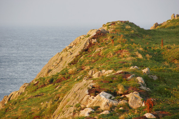 Newfoundland's Bonavista Peninsula