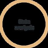 data analysis icon.png