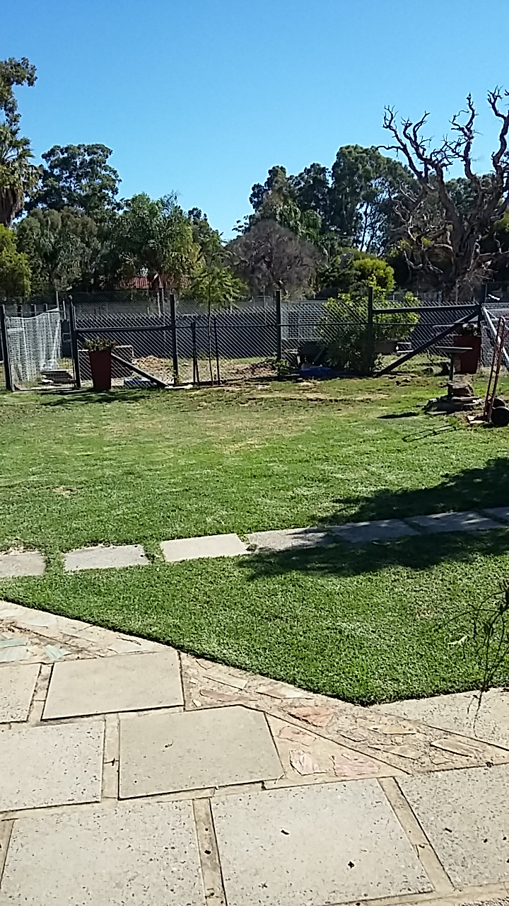 House yard after