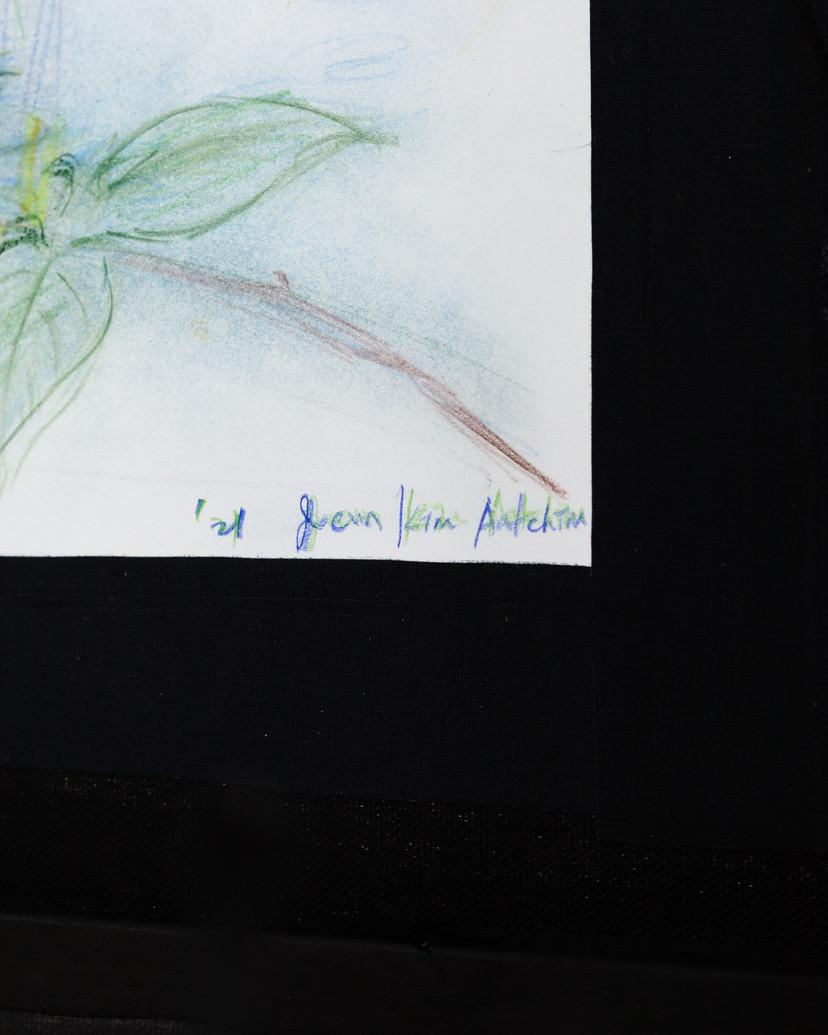 Joeun Kim Aatchim - BAIL MOTHER MELANCHOLY_SUNDAY GARDEN GIVEN FORGIVEN