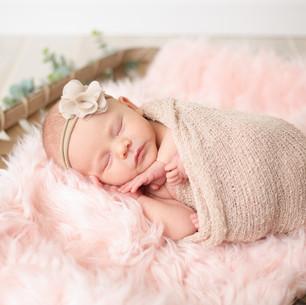 Emma   Springfield, IL Newborn