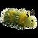 Finger-Puppets-Caterpillar-Green-220x220
