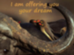 I am offering you your dream.jpg