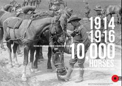 Horses of WW1