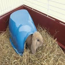 Savic Guinea Pig/Dwarf Rabbit Igloo