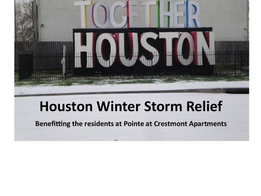 Houston Winter Storm Relief