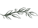 Olivkvist illustration