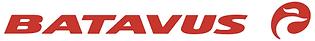 Batavus-logo-800x104.png