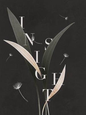 Insight-ekbergdesign.jpg