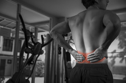Spine and Joint Group, chiropractor