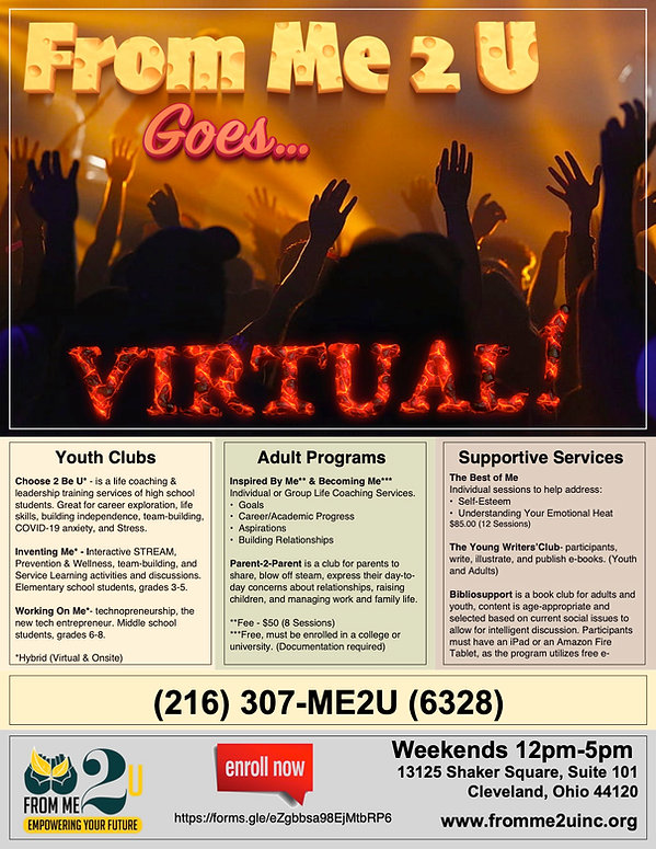 Virtual Programs.jpeg