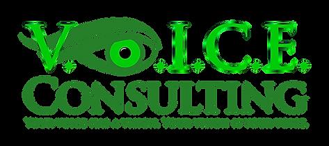 V.O.I.C.E.-Consulting_Final-File-01.png