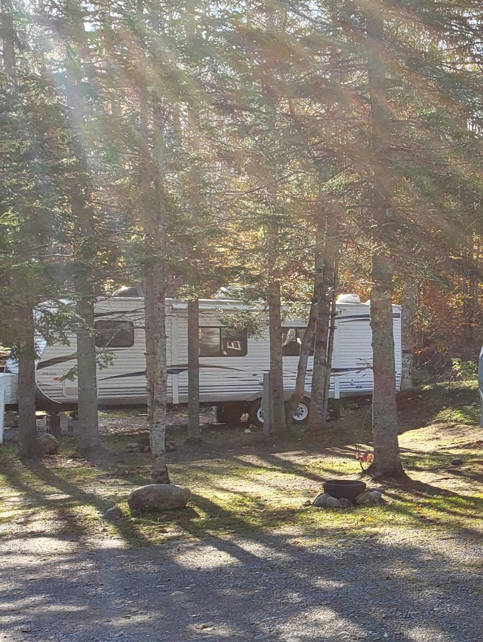 Site 123 Y/R