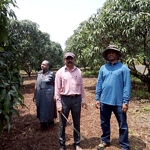 Abhinav Farmers Club  - FCG- Shirsikar Farms