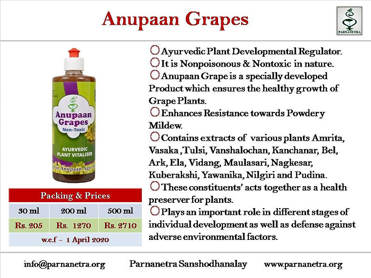 Anupaan Grapes 22082020.jpg