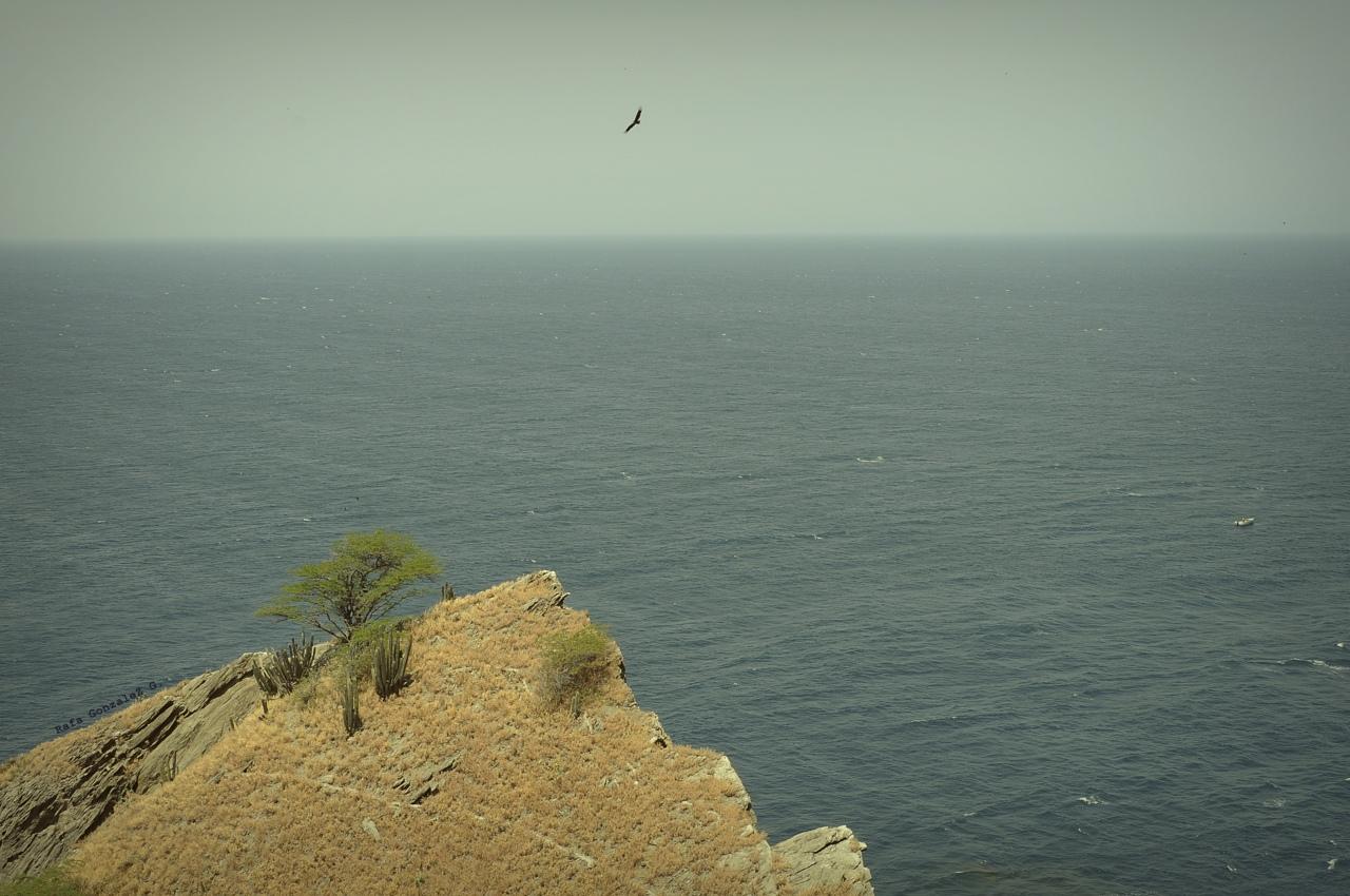 Cerro y mar