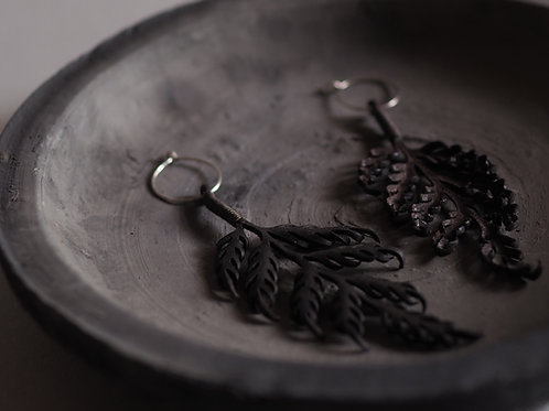 Fern leaves earrings(イヌシダ)