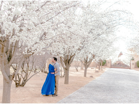 Lorena and Johnny | A Springtime Bloom Engagement Session