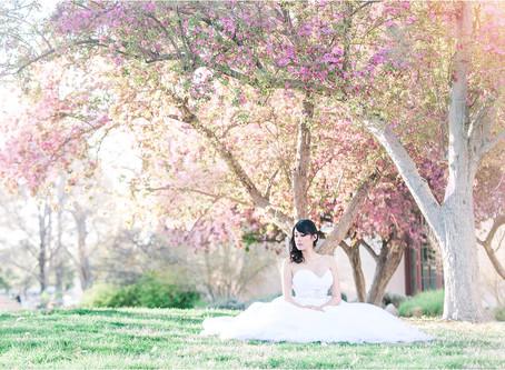 Bride Inspo | Some of Our Favorite Bridal Portraits | Santa fe Wedding Photographer