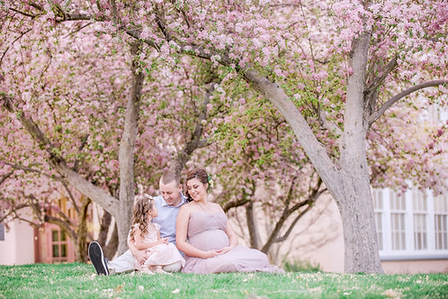 Spring Blooms Mini Sessions