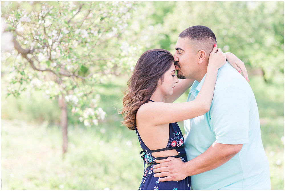 Flower tree engagement in corrales, new Mexico. Albuquerque wedding photographer Maura Jane Photography. Couples photos in Corrales, New Mexico. Engagement session in orchard.