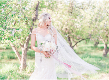 Wedding Dress Bridal Guide Inspiration | Albuquerque and Santa Fe Wedding Photographers
