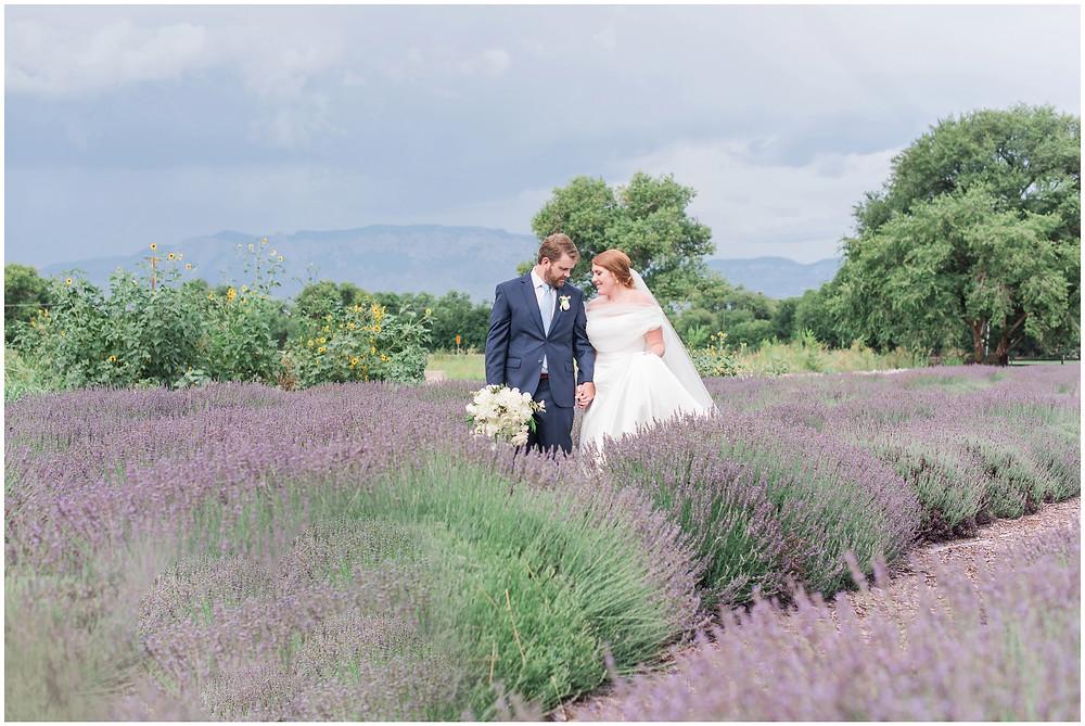 Lavender Wedding. Mountain Wedding. Albuquerque Wedding. Albuquerque Wedding Venue. Los Poblanos Wedding Venue. Albuquerque Wedding Photographer. New Mexico Wedding Photographer. Los Poblanos Lavender Farm.