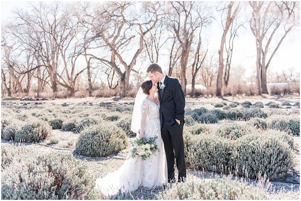 Winter Wedding. Albuquerque Winter Wedding. Albuquerque Wedding Venue. Los Poblanos Wedding Venue. Albuquerque Wedding Photographer. New Mexico Wedding Photographer. Los Poblanos Lavender Farm.