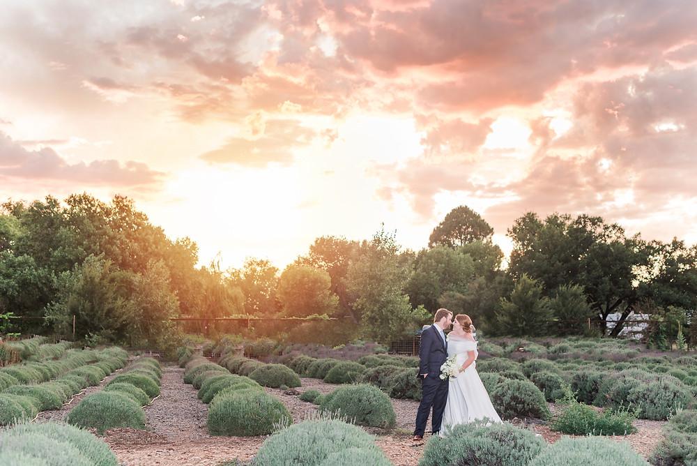 Wedding at Sunset. Places to get married in Albuquerque. Los Poblanos Wedding Venue. Albuquerque Wedding Photographer. New Mexico Wedding Photographer. Los Poblanos Lavender Farm.