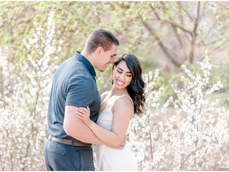 Baylee and Adam | A Changing of Seasons Engagement Session